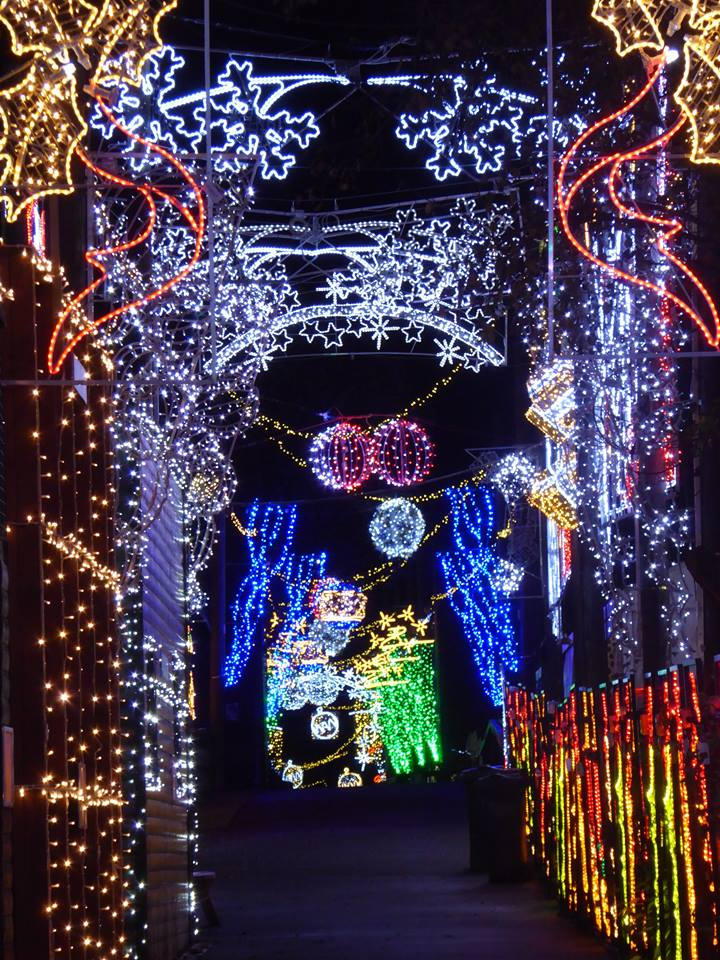 Christmas At The Zoo.Zoo Illuminations 2018 Sold Out Five Sisters Zoo